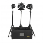 3 Point Tungsten Fresnel Light Kit with Fixtures