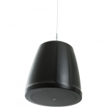 "2-Way 30W Pendant-Mount Loudspeaker, 4.5"", Black"